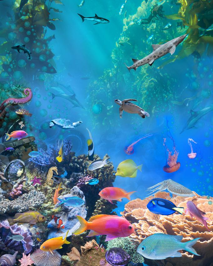Undersea_hidden_objects